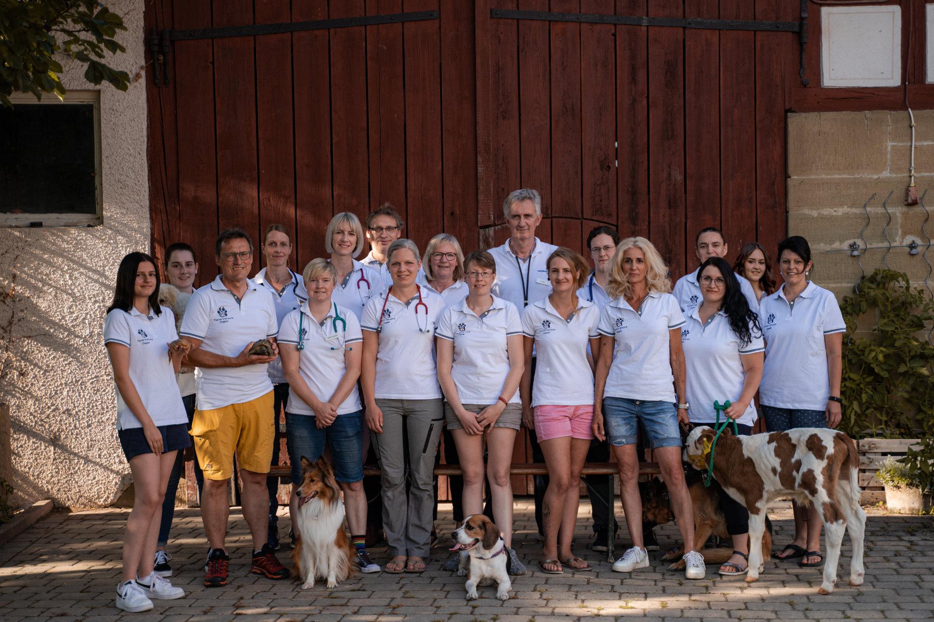 Tierarztpraxis Cappel Team