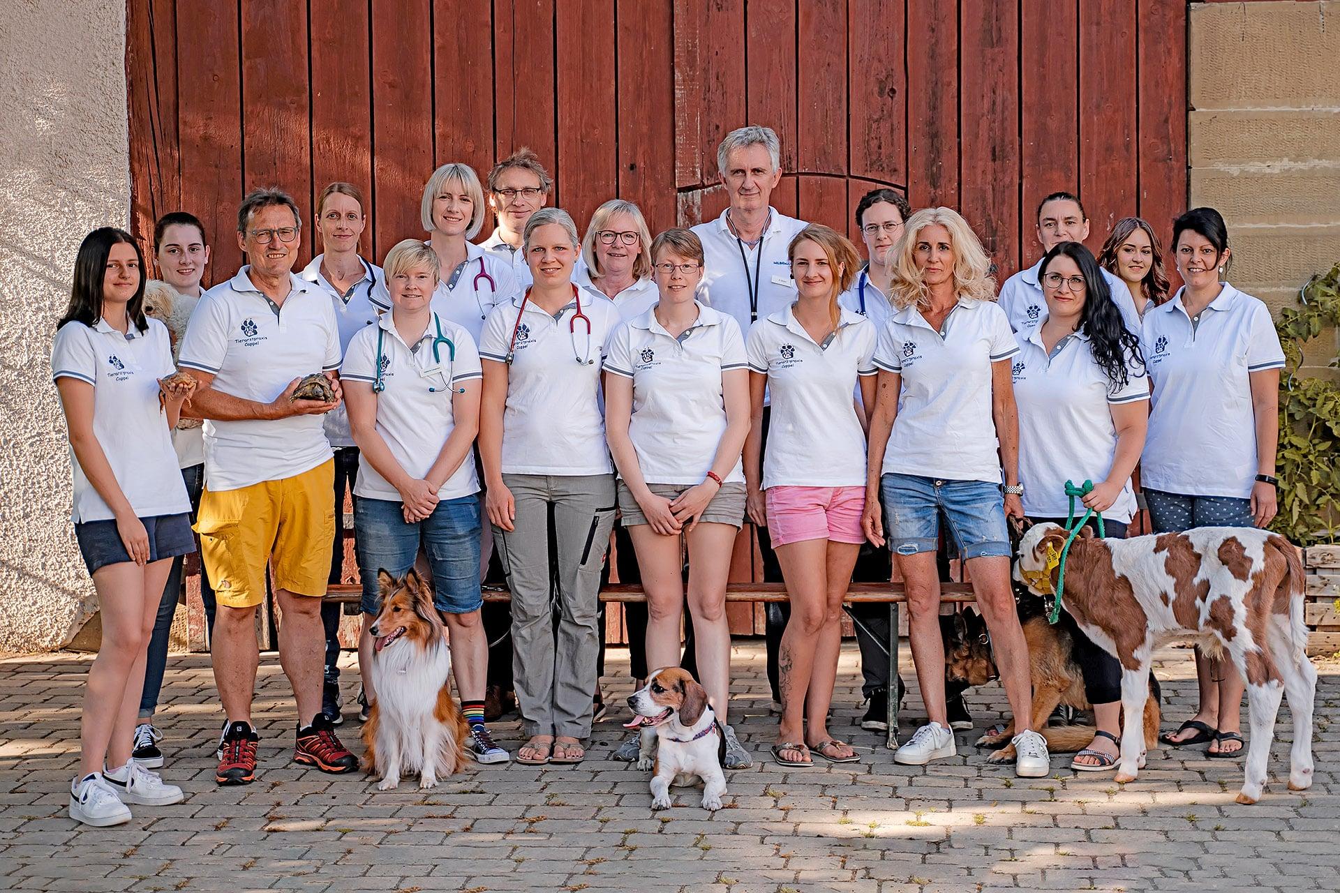 Team Tierarztpraxis Cappel
